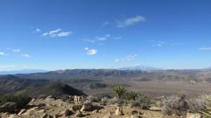 From the top of Ryan Mountain in Joshua Tree. Taken by Jainita Patel